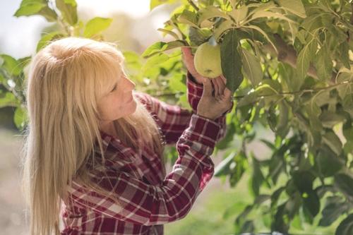 ¿Como puede ayudarme el Ayurveda durante la Menopausia?